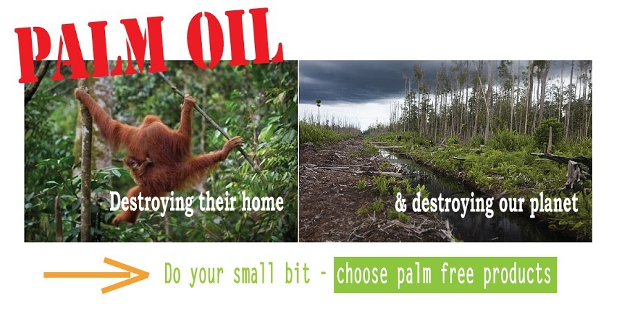 palm-oil-graphic-for-bigcommerce.jpg